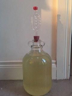 Elderflower Wine in Demi John