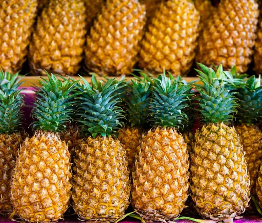 Fresh pineapple for sale.