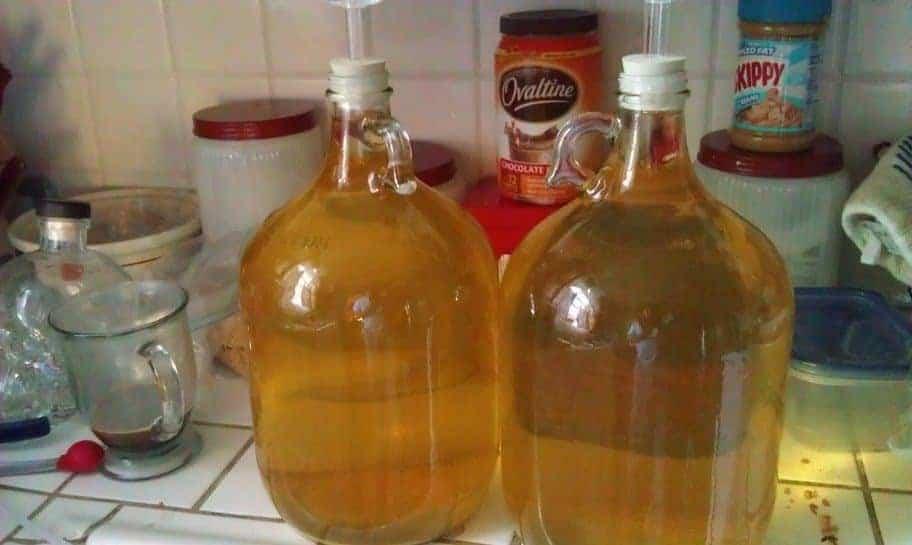 Loquat Wine Recipe