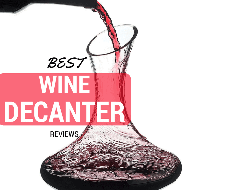 Best wine decanter reviews wine turtle for What is wine decanter