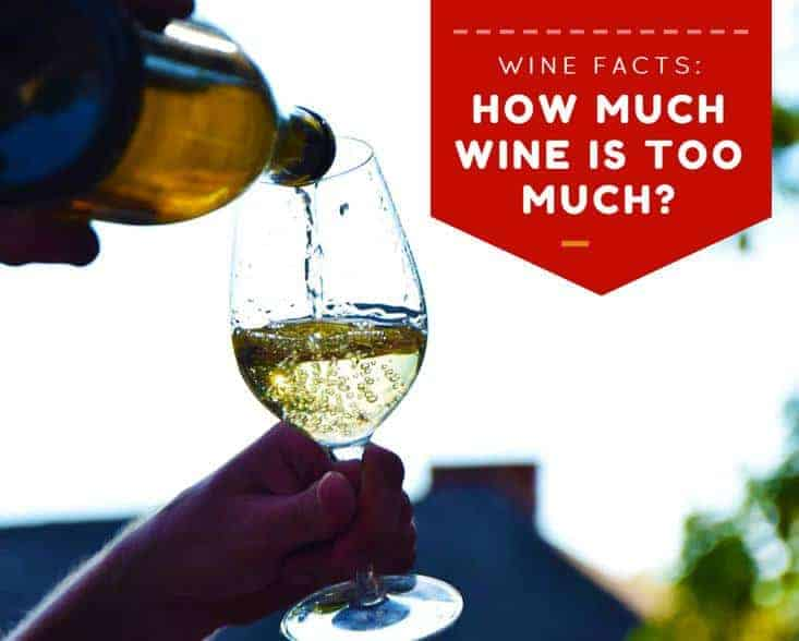 Wine Facts: How Much Wine Is Too Much?