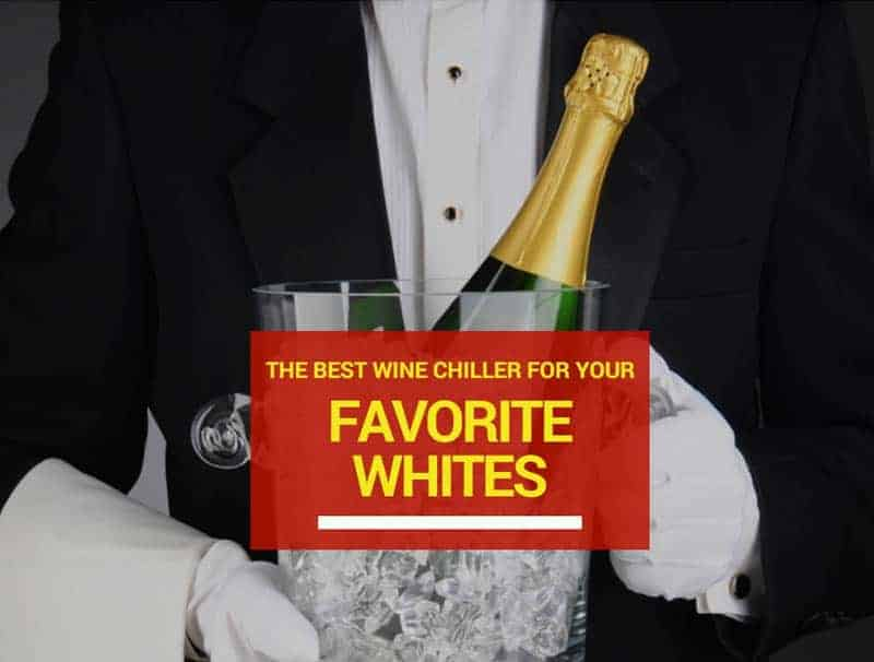 The Best Wine Chiller For Your Favorite Whites - Wine Turtle