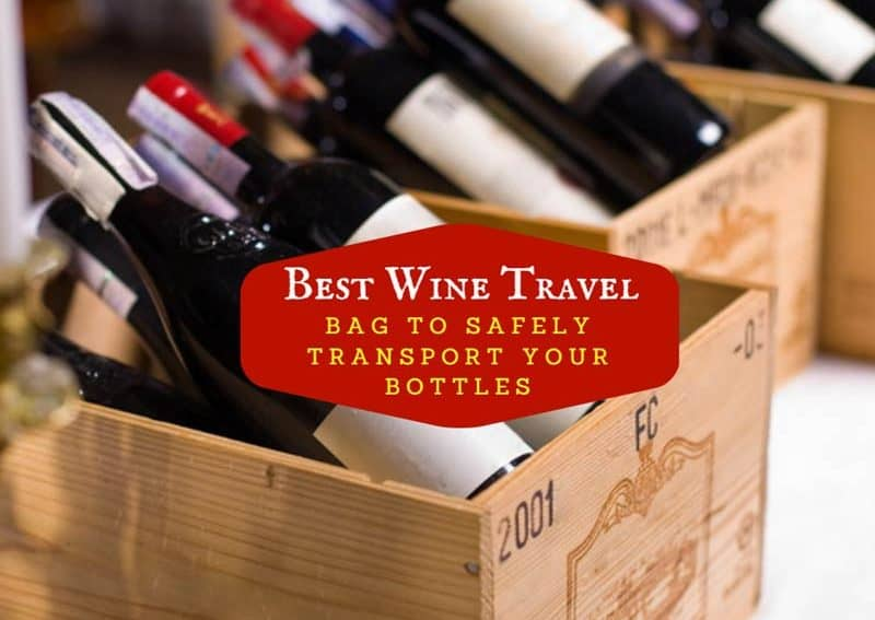 Best Wine Travel Bag To Safely Transport Your Bottles