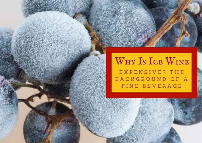 Why Is Ice Wine Expensive? The Background Of A Fine Beverage