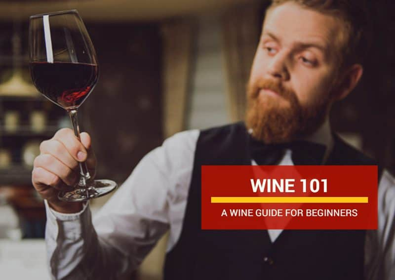 Wine 101 – A Wine Guide For Beginners