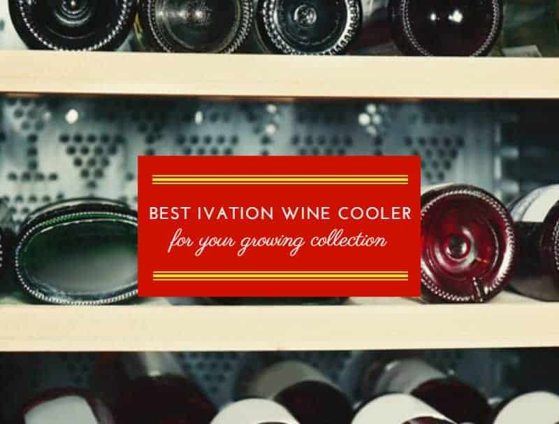Best Ivation Wine Cooler For Your Growing Collection