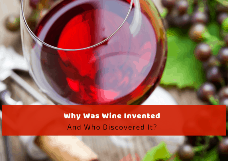Why Was Wine Invented and Who Discovered It