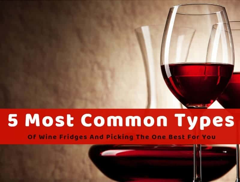 5 Most Common Types Of Wine Fridges And Picking The One Best For You