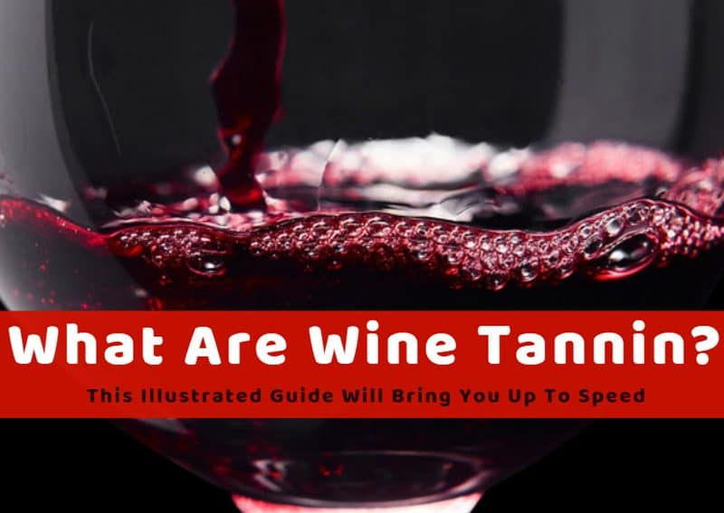 What Are Wine Tannin? This Illustrated Guide Will Bring You Up To Speed
