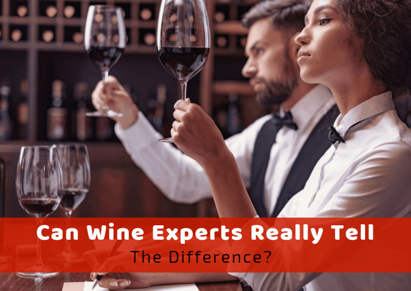 Can Wine Experts Really Tell The Difference Or Are Wine Snobs Just Faking It?